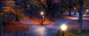 艺术景观照明